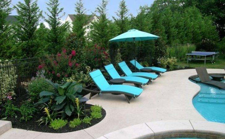 Swimming Pool Renovation Included Removing Old Plant Material