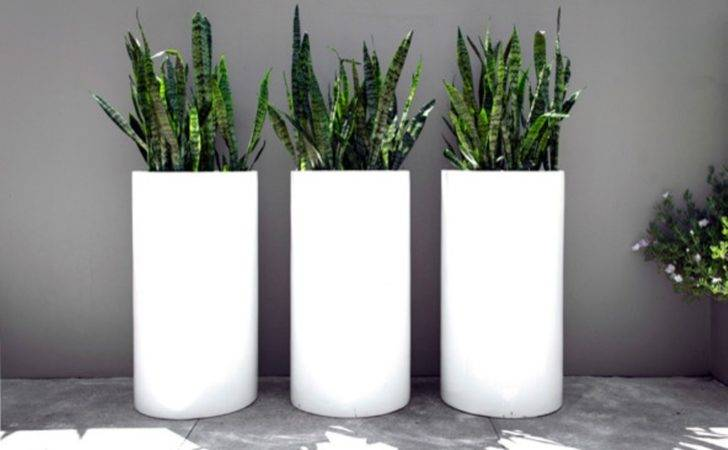 Tall Outdoor Planters Ceramic Interesting Idea