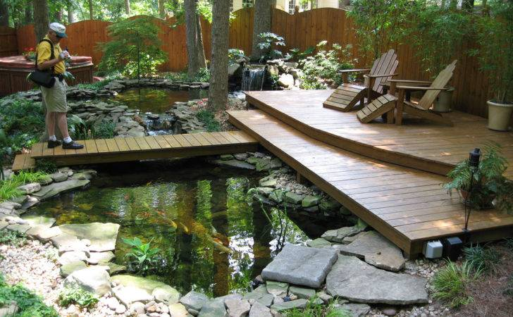 Terrific Koi Pond Great Place Enjoy Nature Lauren Jolly
