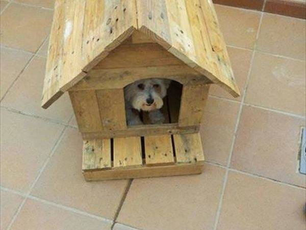 Tips Build Simple Dog House Out Some Wooden Pallets