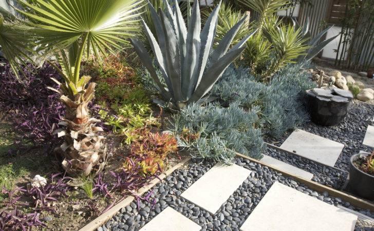 Tips Minimal Maintenance Garden Design Agit Collections