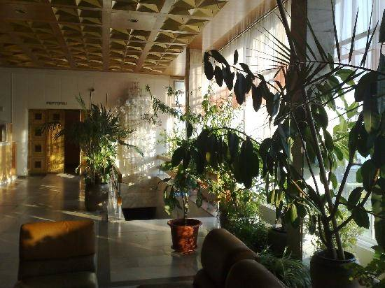 Tourist Complex Russia Tropical Plants Lobby Hotel