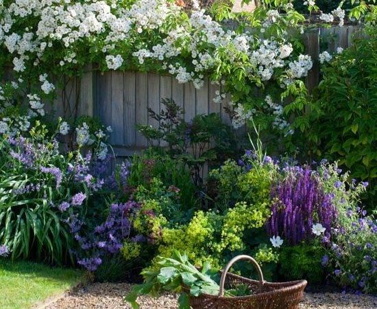 Traditional Garden Plants Gardens Design Ideas