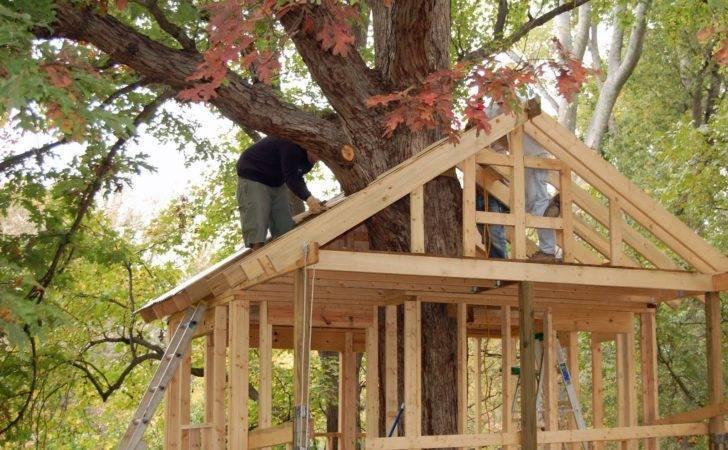 Tree House Building Plans Single Treehouse