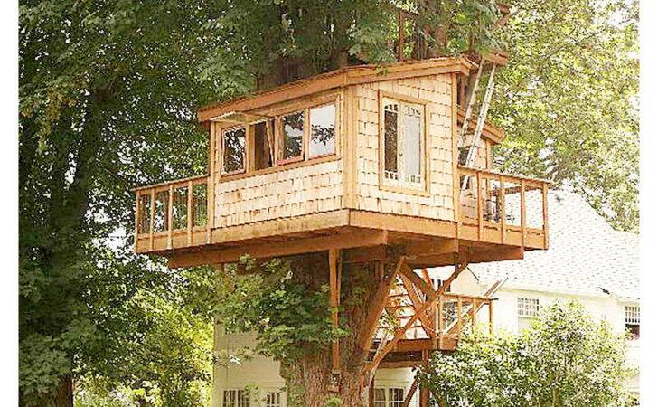 Tree House Designs Plans Treehouse Idea