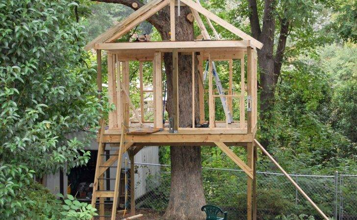 Tree House Plans Blueprints Easy Treehouse