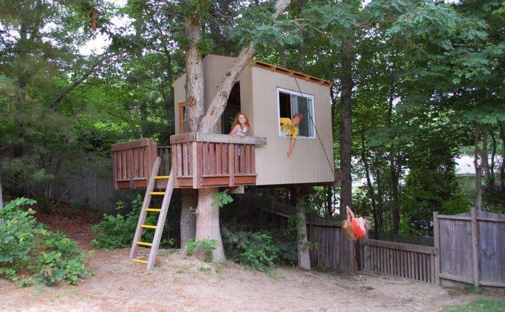 Tree House Platform Plans Simple Standing