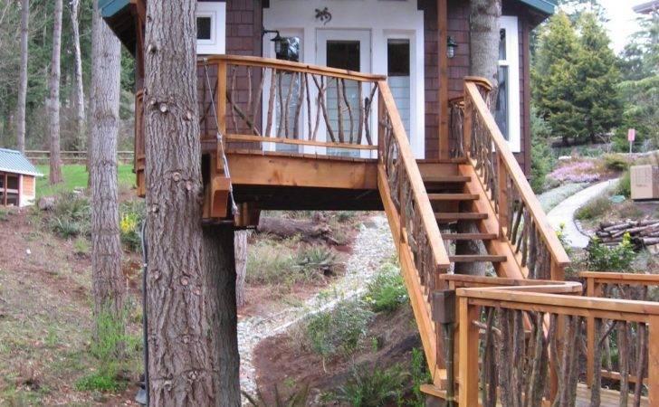 Tree Treehouse Plans House