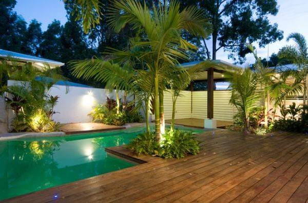 Tropical Design Around Swimming Pool Area