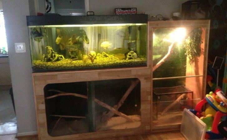Tropical Fish Tanks Let Build Tank