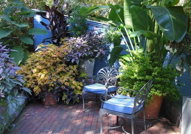 Tropical Garden Design Patio Other Metro