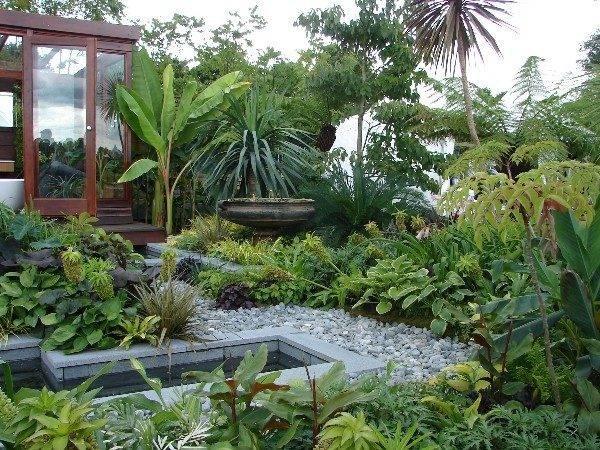 Tropical Garden Design Plans Unique Ideas