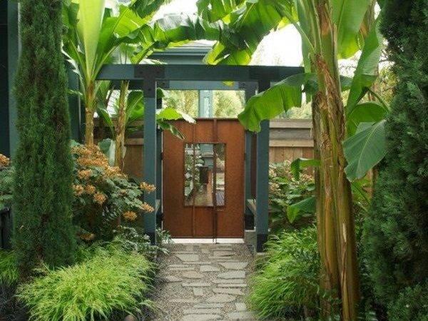 Tropical Garden Landscape Ideas Photograph Creative Tropic
