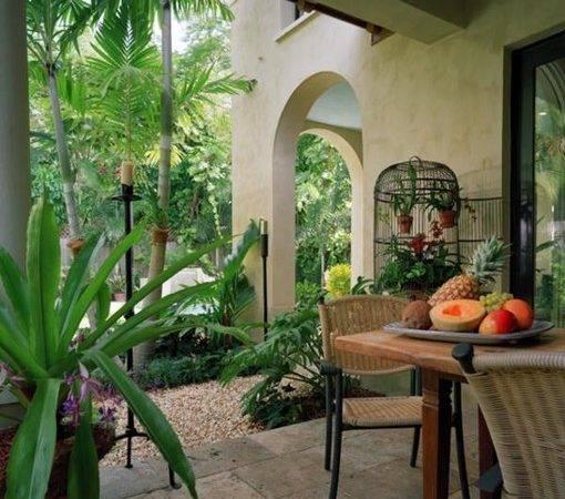 Tropical Garden Pool Area Miami Residence Patio
