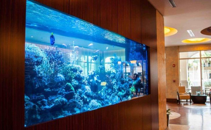 Tropical Marine Fish Tanks