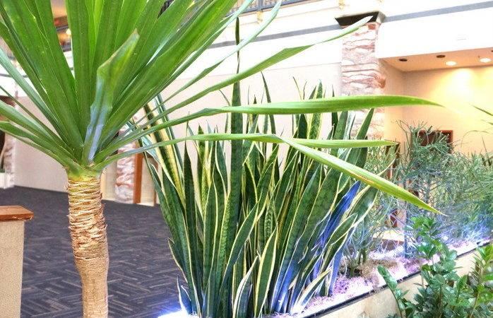 Tropical Plants Neon Lighting