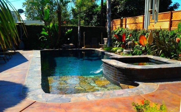 Tropical Pool Designs Architecture Satisfaction Swimming