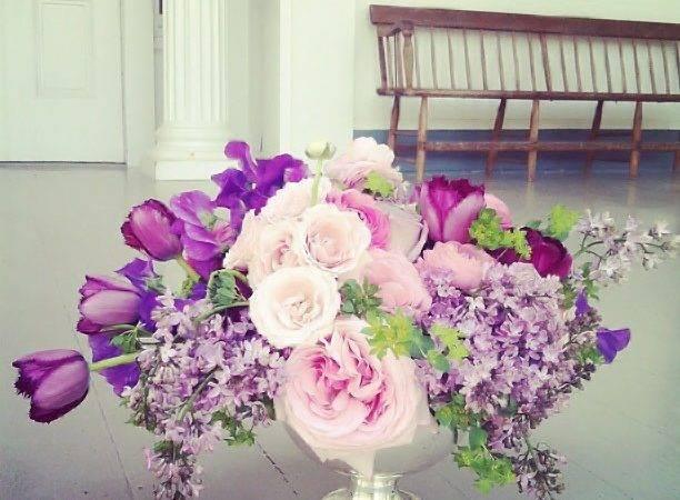 Tulip Design Studio Flowers Pinterest Studios Flower