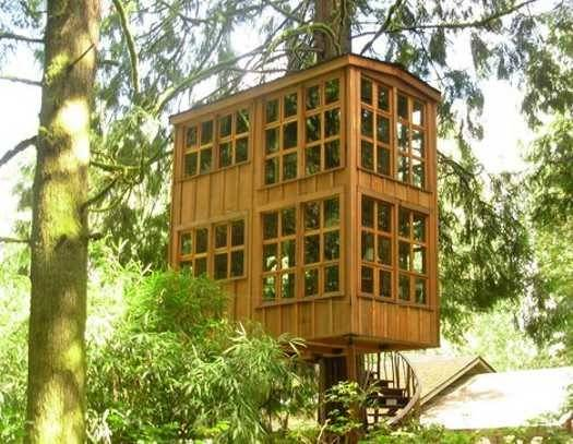 Two Floor Tree House Design