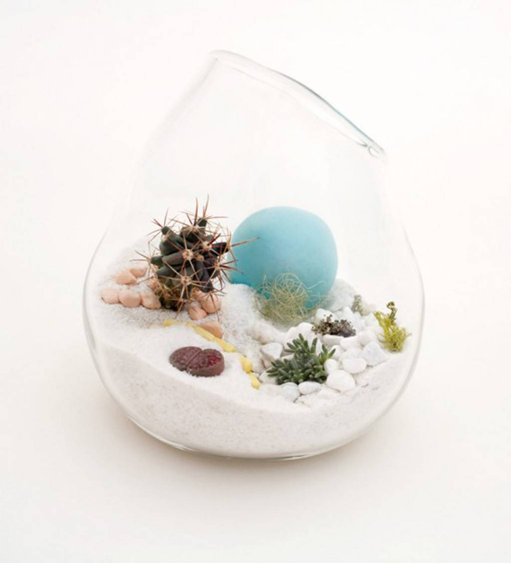 Unique Translucent Terrarium Designs Till Iroonie