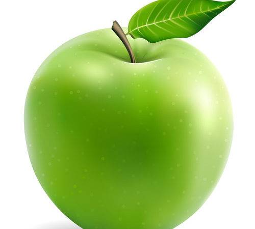 Vector Material Green Apple Fruit