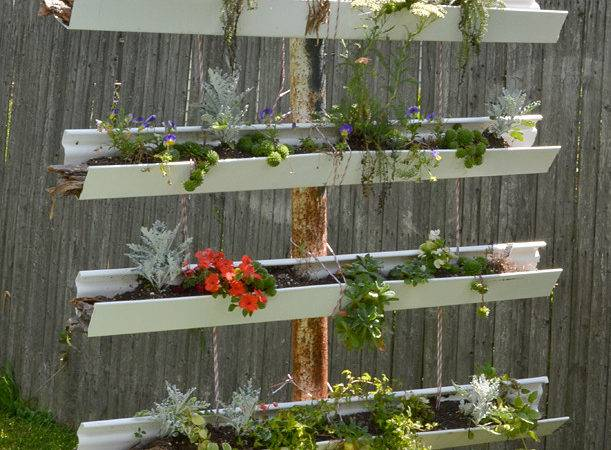 Vertical Garden Made Old Gutters Draws Attention