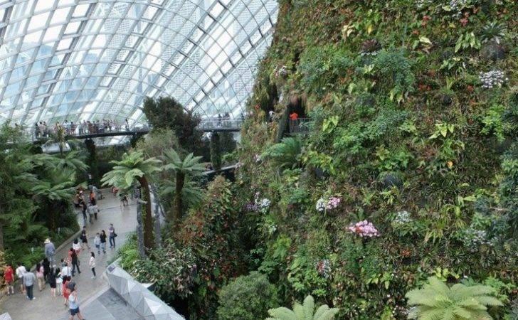 Vertical Gardening Cloud Forest Conservatory Singapore Botanical