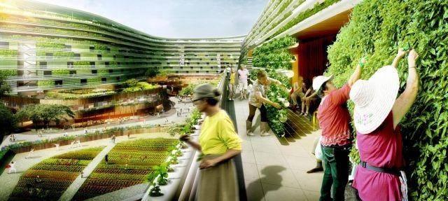 Vertical Gardening Singapore