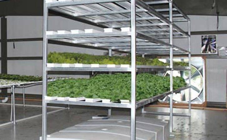 Vertical Nft Lettuce Herb System Pro Farmtek