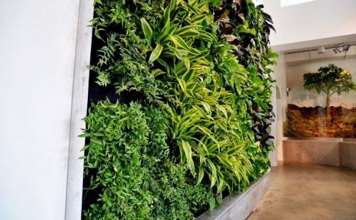 Vertical Vegetable Gardening Systems Aquarium Garden