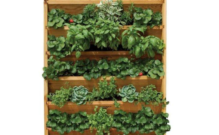 Vertical Vegetable Gardening Systems Gronomics Garden