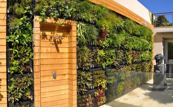 Wall Garden Design Techniques Create