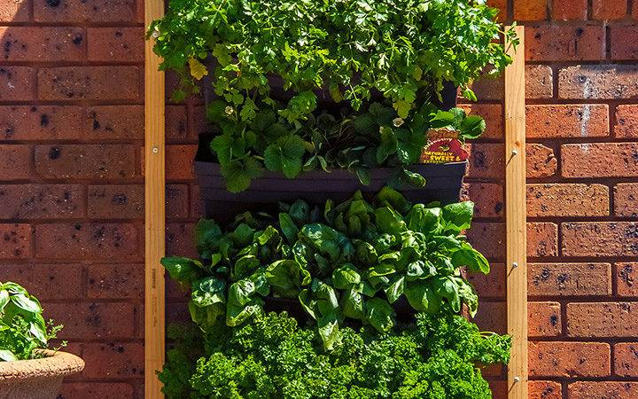 Wall Garden Living Planter Vertical Gardening Decoration Balcony Patio