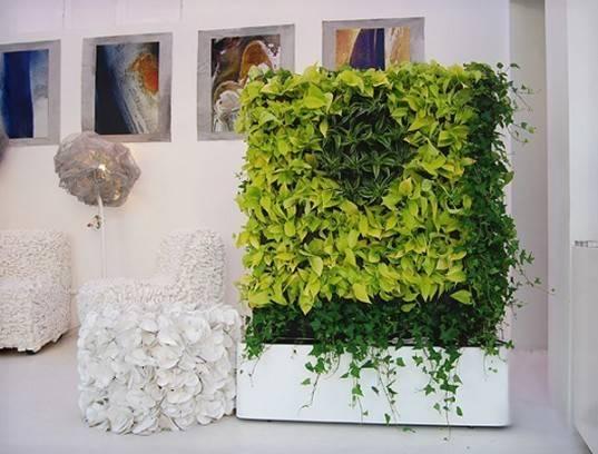 Wall Greenscreen Greenworks Plantwall Plant Walls Air