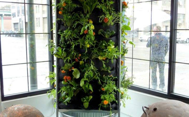 Walls Vertical Garden Systems Aquaponic Vegetable