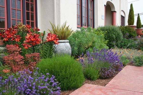 Waterwise Landscape Consider Mediterranean Garden Design