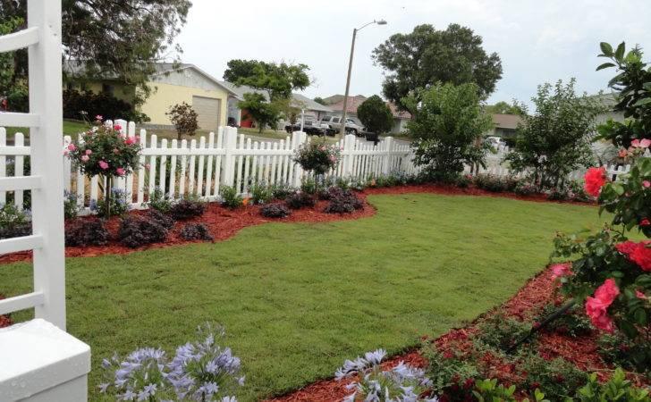 Wax Myrtle Privacy Landscaping Fence Property Line Landscape Ideas
