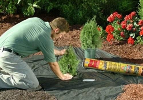 Weed Barrier Fabric Easy Gardener Block Landscape