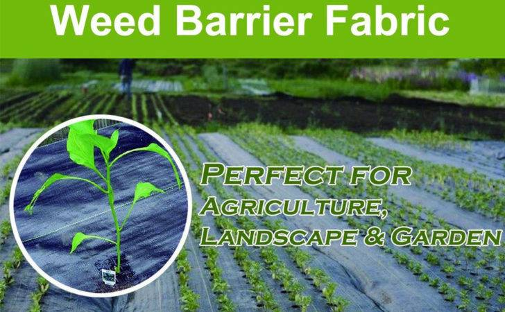 Weed Control Barrier Landscape Fabric Membrane Ground Cover