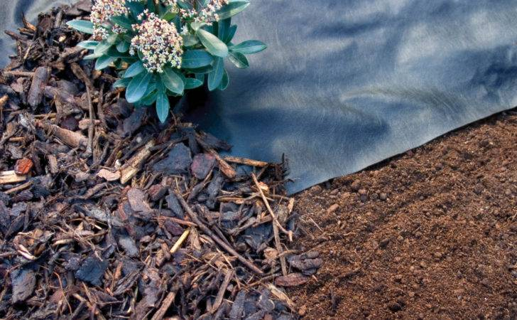 Weed Control Fabric Used Conjunction Mulch Wood Chip