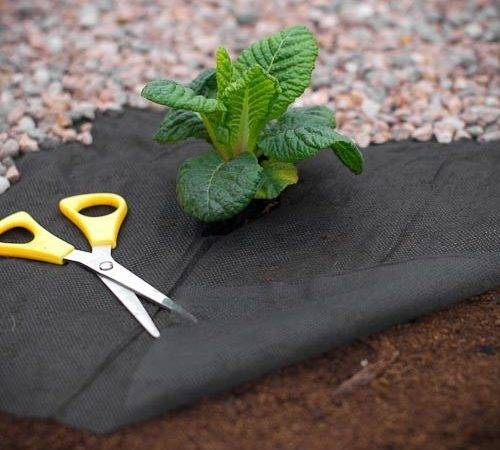 Weed Control Fabric Vegetable Garden Prevention