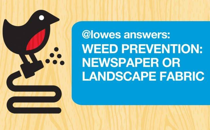 Weed Prevention Newspaper Landscape Fabric Youtube