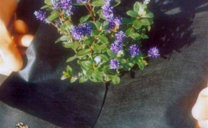 Weedban Weed Control Fabric Helps Prevent Weeds Growing But