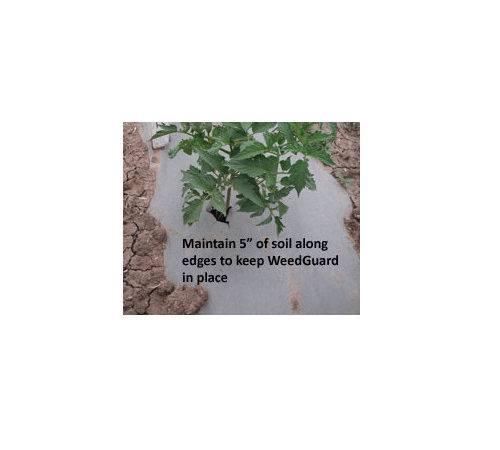 Weedguardplus Roll Gardening Mulch Supplies