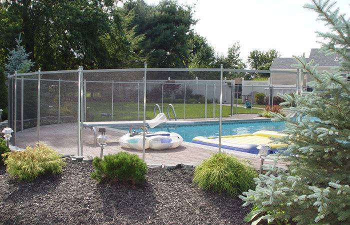 Which Best Plants Around Swimming Pool