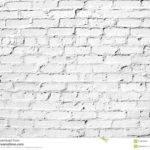 White Brick Wall Exterior Contractors Landscape Designers