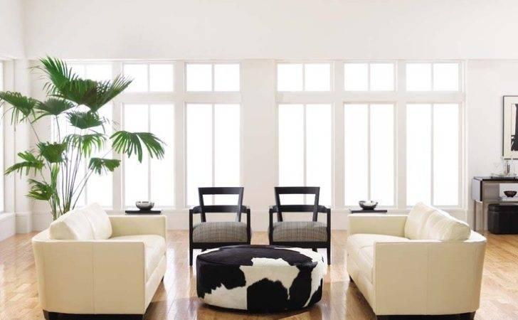 White Walls Light Wood Floors Cream Colored Furniture Make