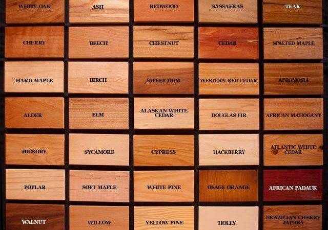 Wood Info Species Inspiration Ideas Norm Types