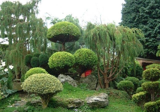 World Tour Center Small Japanese Garden