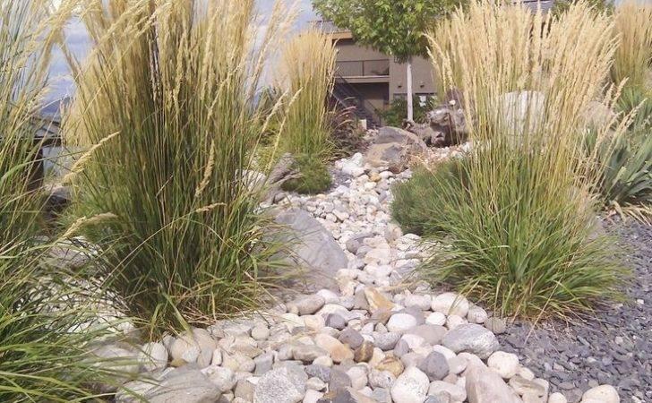 Xeriscape Colorado Ideas Landscaping